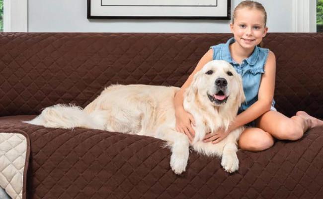Sofa Shield Original Patent Dog Couch Cover