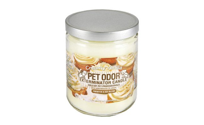 Specialty Pet Products Odor Exterminator Candle
