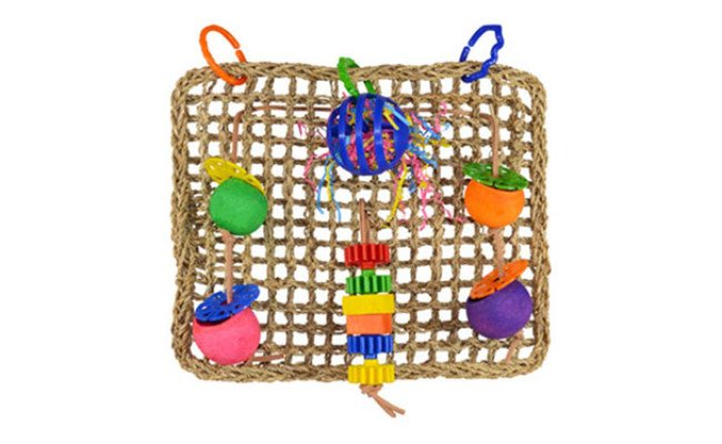 Super Bird Wall Bird Toy
