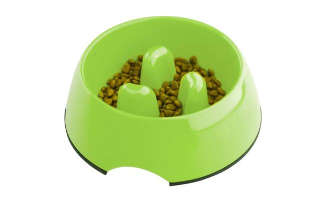 Super Design Anti Gulping Dog Bowl Slow Feeder