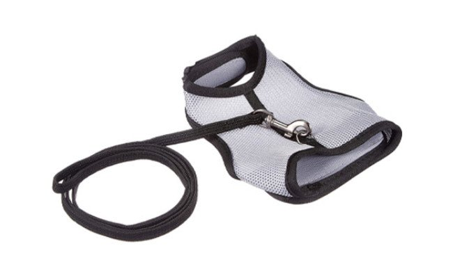 TRIXIE Pet Products Soft Harness with Leash-Nylon