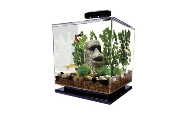 Tetra GloFish 3 Gallon Goldfish Tank