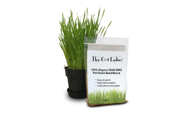 The Cat Ladies Organic Cat Grass Seeds