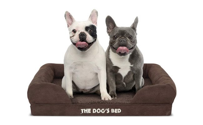 The Dog's Bed Orthopedic Waterproof Dog Bed