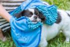 Tuff Pupper Large Dog Shammy Towel