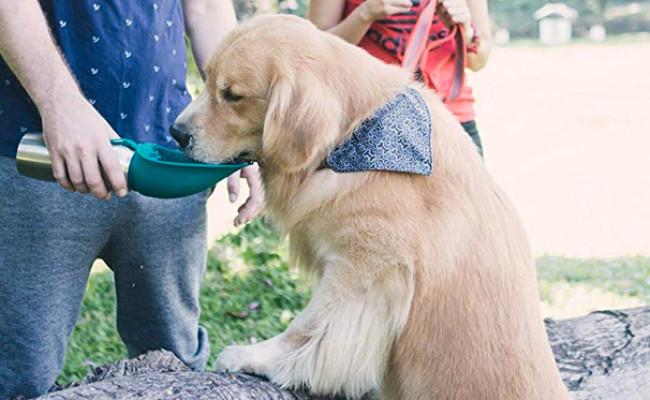 Tuff Pupper Portable Dog Water Bottle