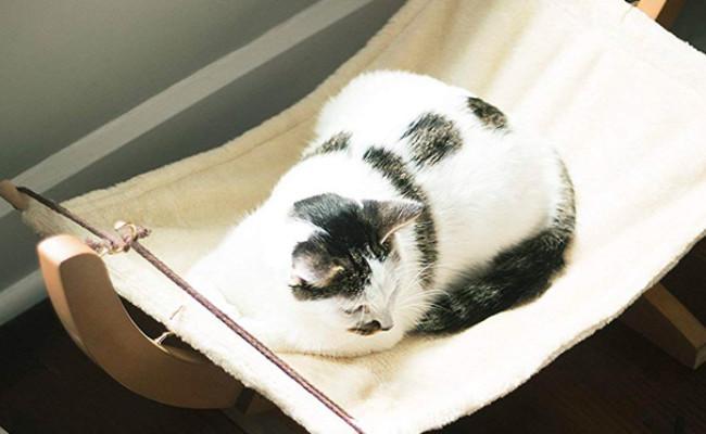 Vea pets Luxury Cat Hammock