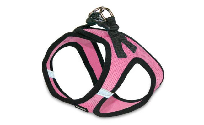 Voyager Step-In Air Cat Harness