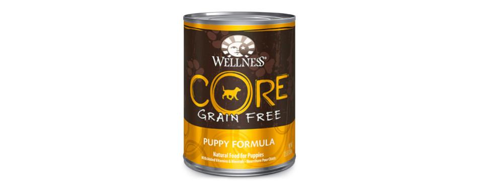 Wellness CORE Wet Canned Dog Food
