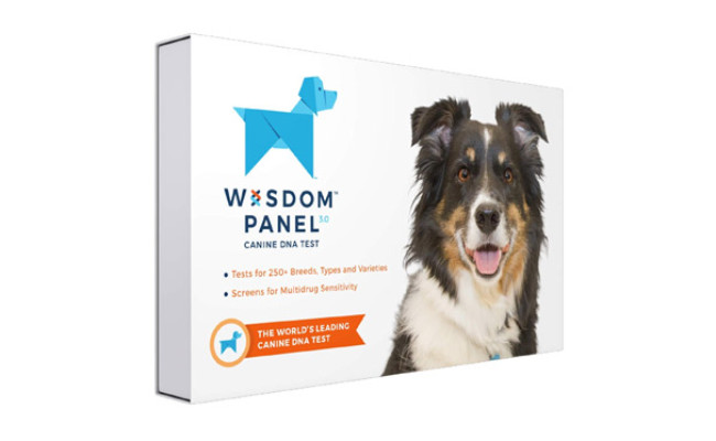 Wisdom Health Breed Identification Dog DNA Test