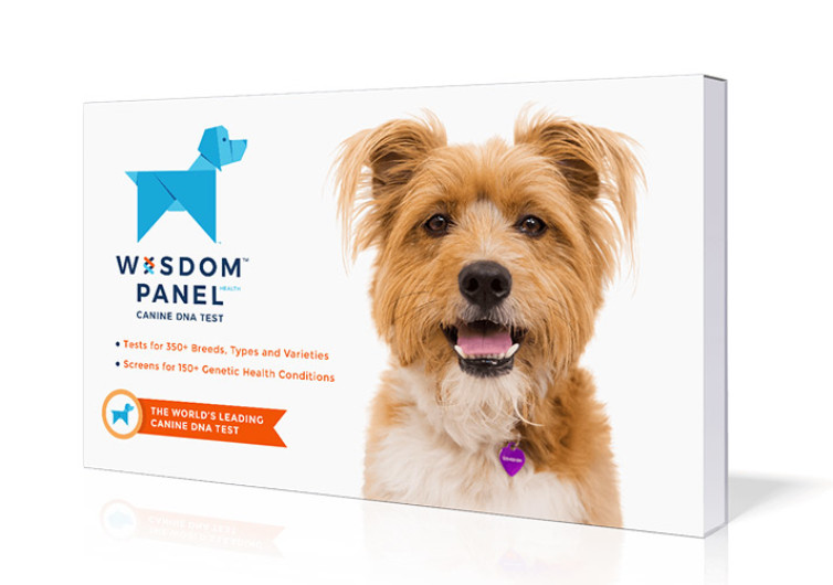 Wisdom Panel 2.5 Breed Identification DNA Test Kit