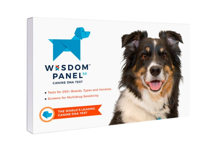 Wisdom Panel 3.0 Breed Identification DNA Test Kit