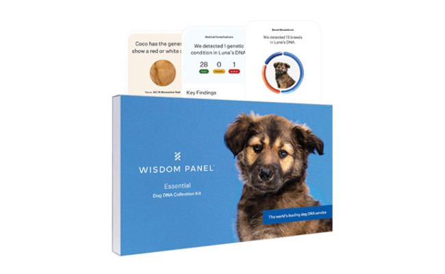 Wisdom Panel Essential New and Improved Dog DNA Test