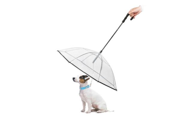 abzon dog umbrella