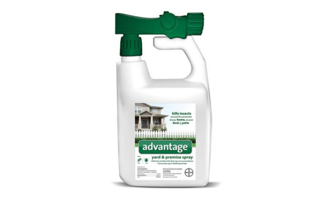 advantage flea killer for yards