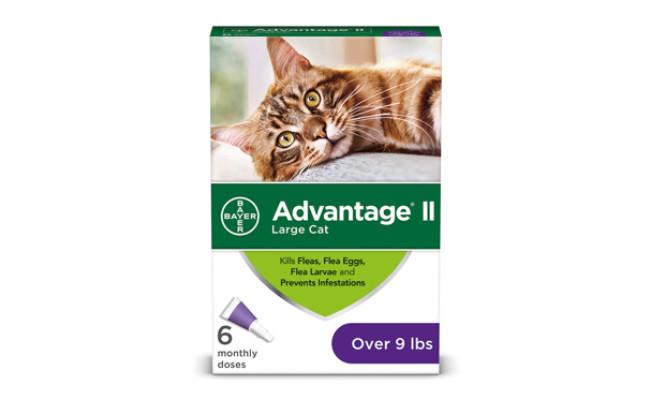 advantage flea treatment ii for cats