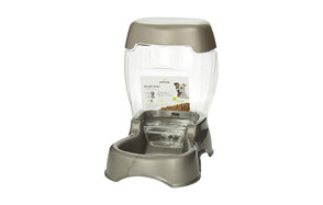 affordable automatic cat feeder