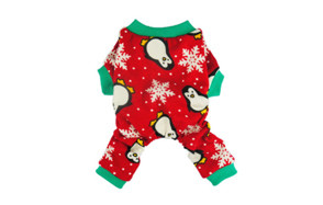 affordable dog christmas outfit