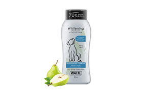 affordable dog shampoo