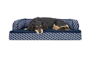 affordable orthopedic dog bed