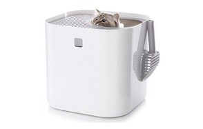 affordable self cleaning litter box