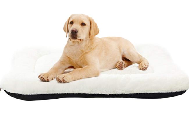 anwa washable dog bed
