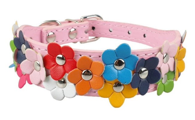 berry pet dog leather collar