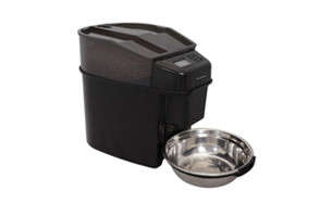 best choice automatic cat feeder