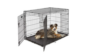 best choice dog crate