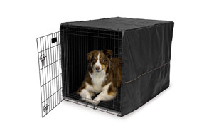 best choice dog crate cover