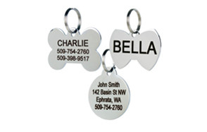 best choice dog id tag