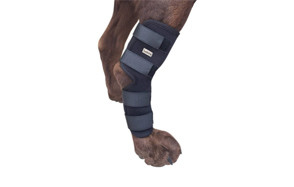best choice dog knee braces