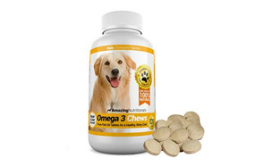 best choice fish oil for dogs