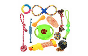 best choice toy for puppy