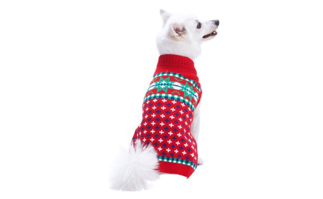 blueberry pet dog christmas outfit
