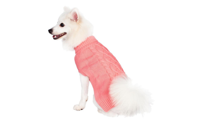 blueberry pet dog sweater