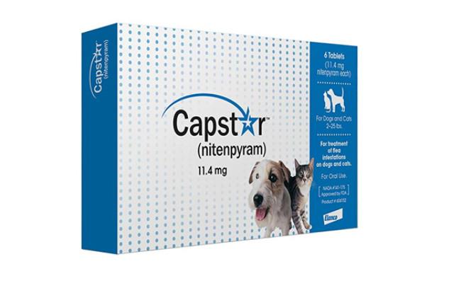 capstar flea treatment