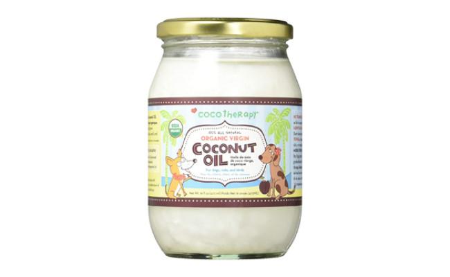coco therapy dog coconut oil