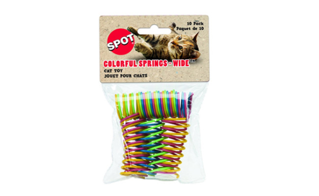 colorful spring for cats