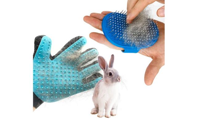 dasksha rabbit grooming kit