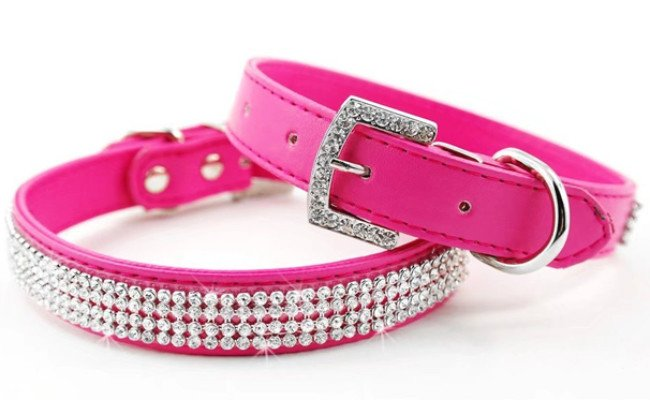 didog crystal leather dog collar