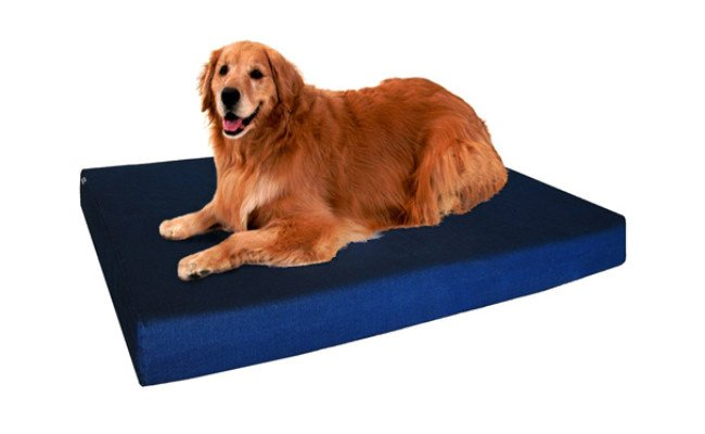 dogbed4less washable