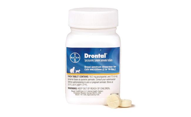 drontal cat dewormer