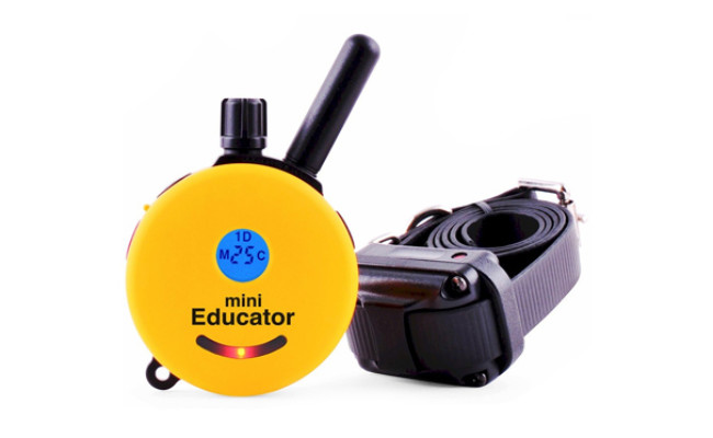 educator e collar for dogs