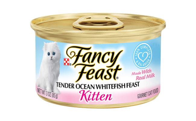 fancy feast kitten food
