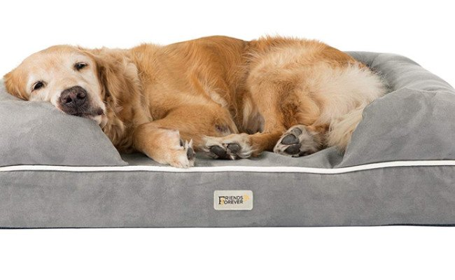 friends forever washable dog bed