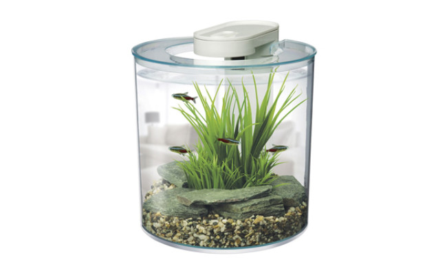 hagen aquarium