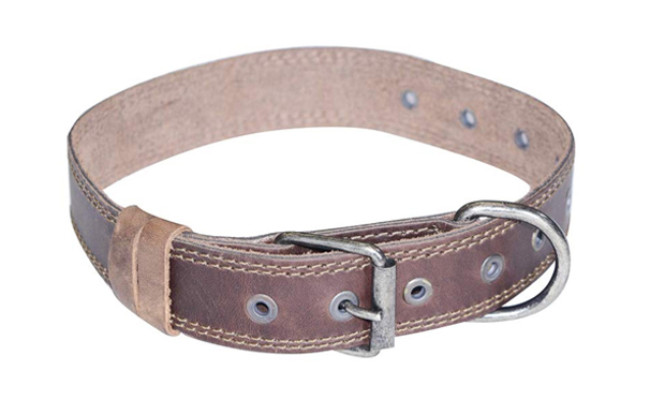 hide and drink leather dog collar