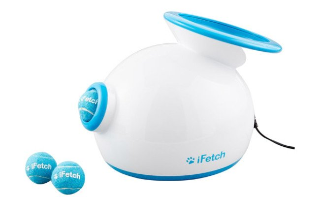 iFetch Automatic Ball Launcher Dog Toy