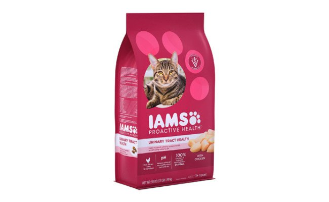 iams cat food for urinary tract health